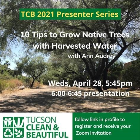 10 Tips to Grow Native Desert Trees with Harvested Water